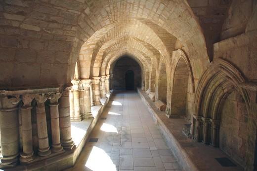 France, Pays de la Loire, Vend?e (85), Marais Poitevin, Nieul sur l'Autise, Saint Vincent abbey, the cloister : Stock Photo