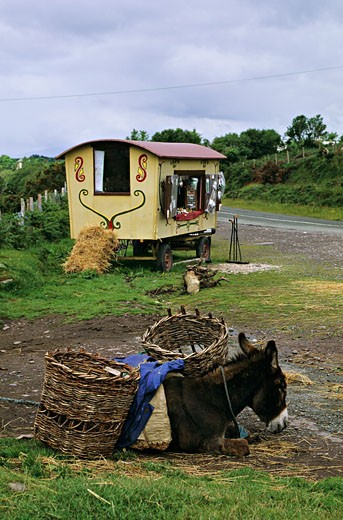 Stock Photo: 1606-12040 Ireland, Kerry, caravan near a road, dunkey in foreground