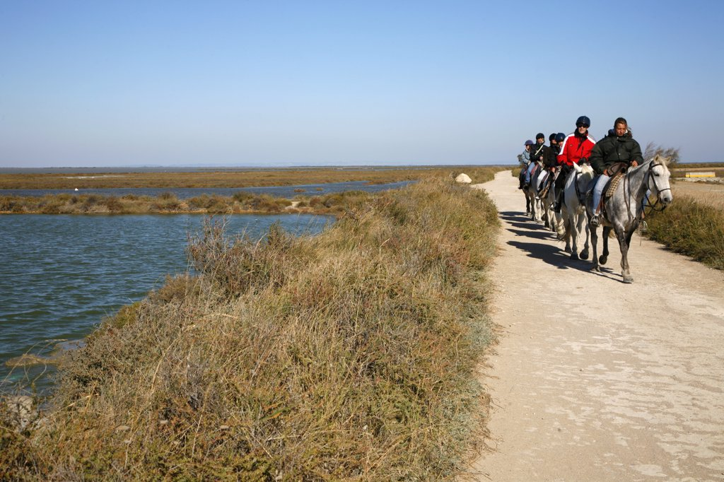 France, Provence alpes cote d'Azur, Bouches du Rh?ne (13), Camargue, Saintes-Maries-de-la-Mer, rider on seawall : Stock Photo