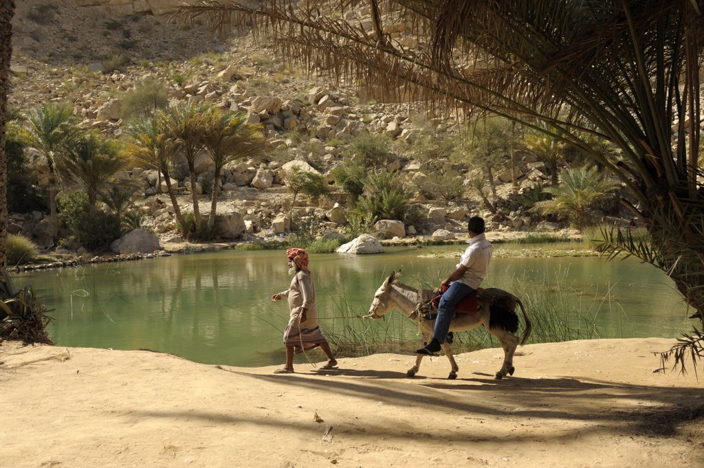 Stock Photo: 1606-124914 Sultanate of Oman, Ash Sharqiyah, Wadi Bani Khaled