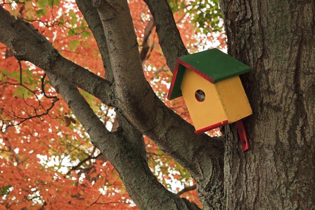 Canada, Québec, St Michel de Bellechasse, birdhouse : Stock Photo