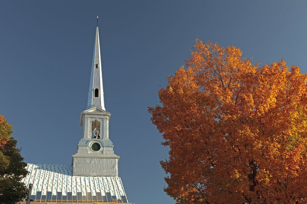 Canada, Québec, St Michel de Bellechasse, church, maple : Stock Photo