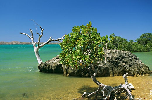 Stock Photo: 1606-13170 Africa, Madagascar, west coast, Anfily, green sea