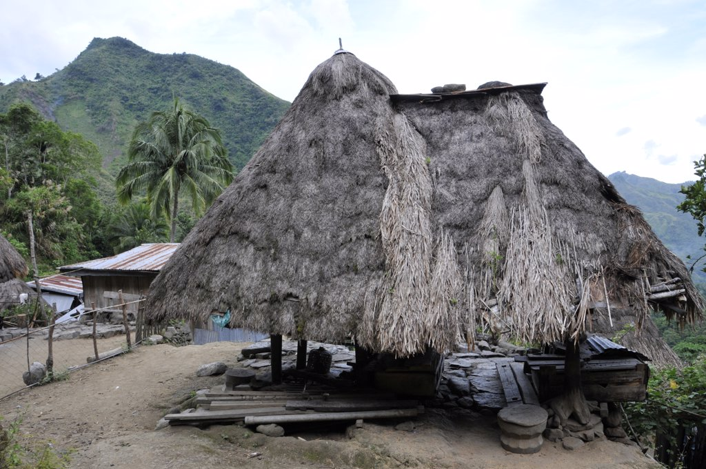 Stock Photo: 1606-131937 Philippines, North Luzon, Ifugao, Patpat, traditional house on stilts