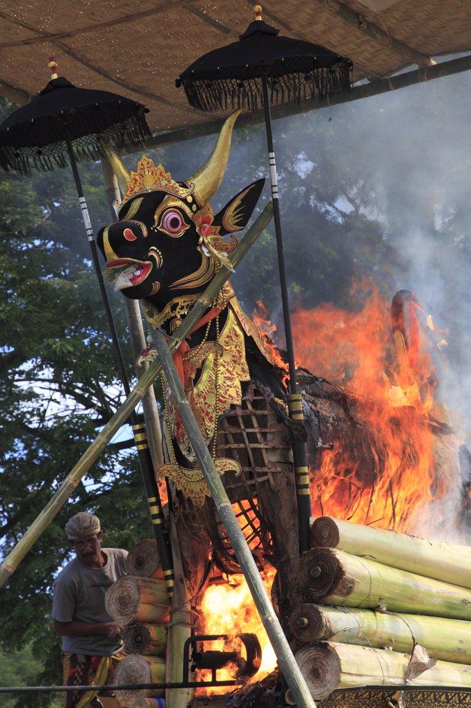 Indonesia, Bali, cremation ceremony, the cremation animal, bull figure, burning, : Stock Photo