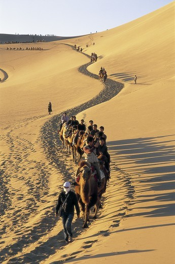 Stock Photo: 1606-140994 China, Gansu Province, Dunhuang, Tourists Riding Camels at Mount Mingshan