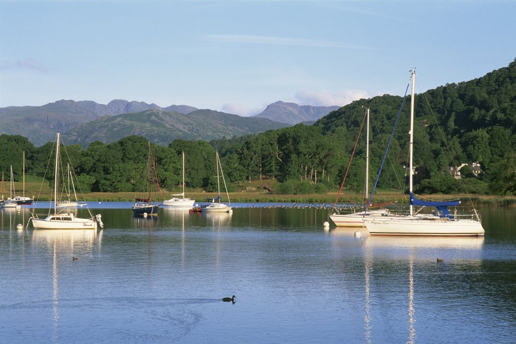 Stock Photo: 1606-144432 England,Cumbria,Lake District,Yachts on Lake Windermere at Ambleside