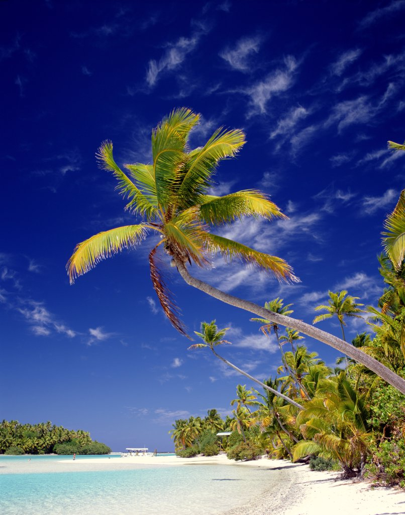 Stock Photo: 1606-145226 Cook Islands, South Pacific / Polynesia, Aitutaki Island, Atoll / Palm Trees & Tropical Beach / Sea & Sand