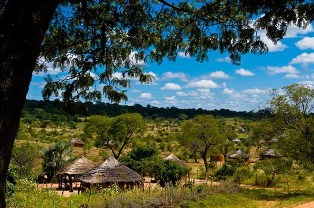 Stock Photo: 1606-162054 Africa, Zimbabwe, North Matabeleland province, the Ndebele village Monde
