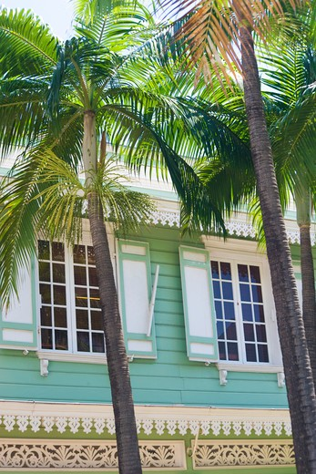 Close up of colonial house 's windows, green and withe front, palm trees, St Denis, Reunion Island, Indian Ocean, France : Stock Photo