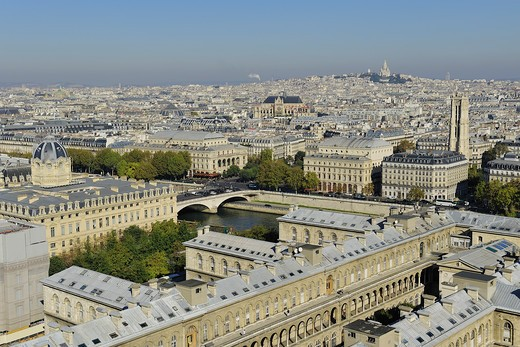 France, Ile-de-France, Capital, Paris, 4th, City center, plunging View(Sight) (seen since Notre-Dame) : Stock Photo