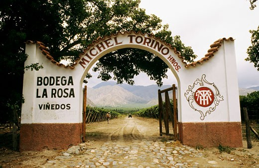 Stock Photo: 1606-16250 Argentina, Salta province, Cafayate, front door of a wine production factory, vineyard in the background