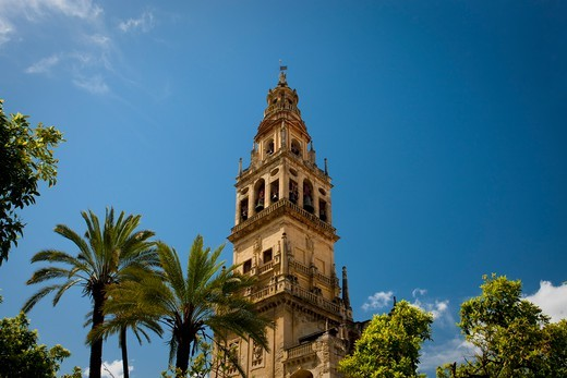 Spain, Andalusia, Cordoba, Cathedral–Mosque : Stock Photo
