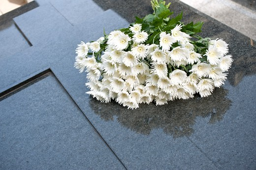 Stock Photo: 1606-167026 France, Paris, Pere Lachaise Cemetery, bouquet of chrysanthemums on a grave