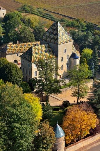 France, Bourgogne, Santenay (21), Castle in the varnished tiles : Stock Photo