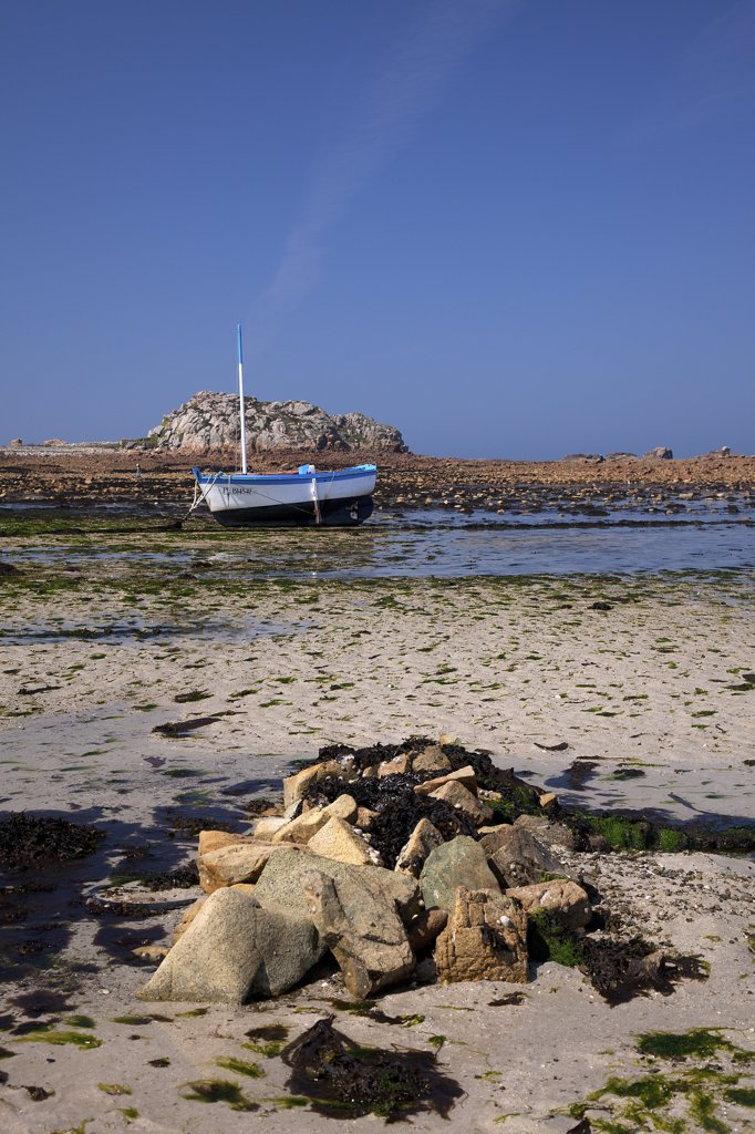 France, Cotes d' Armor, Plougrescant, low tide, boat : Stock Photo