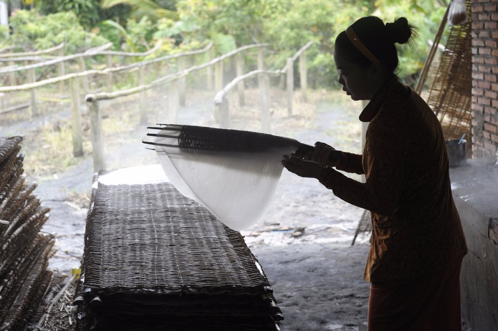 Asia, Southeast Asia, Vietnam, delta of Mekong, Can Tho, woman working, rice cakes : Stock Photo