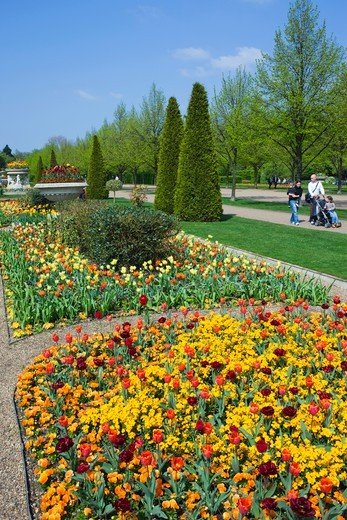 Stock Photo: 1606-174069 England,London,Regents Park,Avenue Gardens,Flower Display