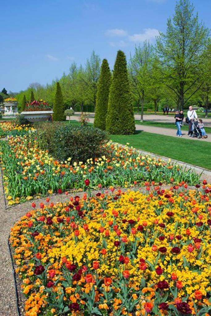 Stock Photo: 1606-174069 England,London,Regents Park,Avenue Gardens,Flower Display
