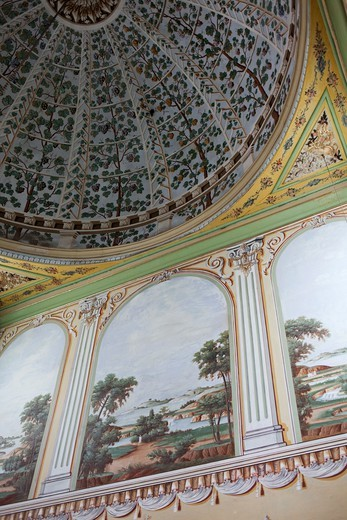 Stock Photo: 1606-176150 Turkey,Istanbul,Topkapi Palace Museum,The Harem,Wall Decoration in the Queen Mother Apartments