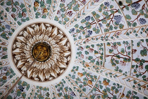 Turkey,Istanbul,Topkapi Palace Museum,The Harem,Ceiling Decoration in the Queen Mother Apartments : Stock Photo