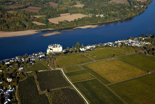 Stock Photo: 1606-177003 France, Maine et Loire (44), labeled Village Montsoreau The Most Beautiful Villages of France, the chateau of the fifteenth century, on the banks of the Loire, the vineyards of Loire wines, Champigny, Saumur, (aerial view)