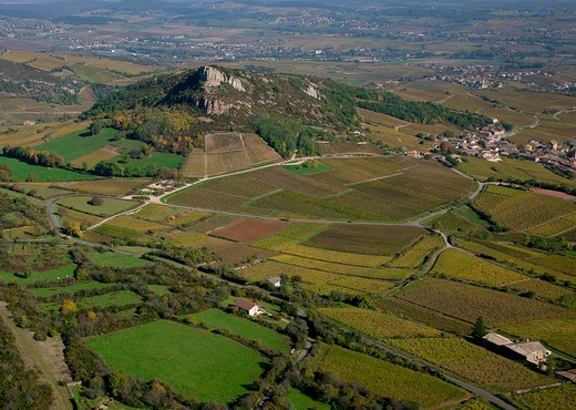 Stock Photo: 1606-177078 France, Saone-et-Loire (71), Solutre, village of the Mâconnais vineyard, Cru Burgundy Pouilly-Fuisse, general view of the vineyard and the Solutre rock, (aerial view)