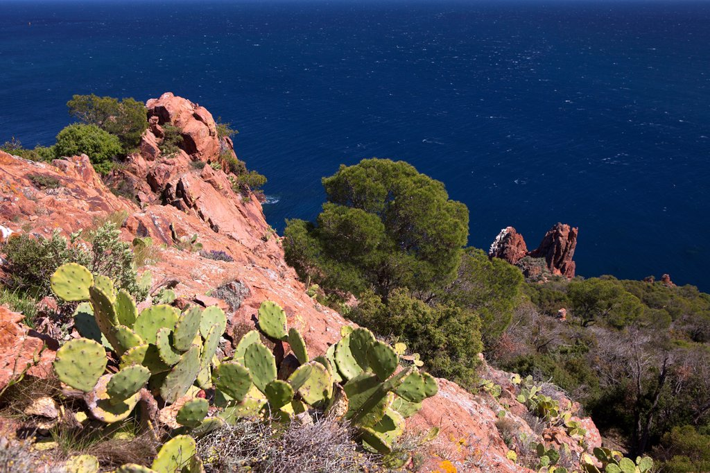 Stock Photo: 1606-181174 France, Var (83), The Esterel, coastal landscape of the Mediterranean, the Corniche d'Or, to Saint Raphael and Frejus,
