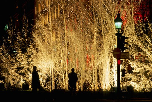 Stock Photo: 1606-18160 France, Paris, street at Christmas time, by night