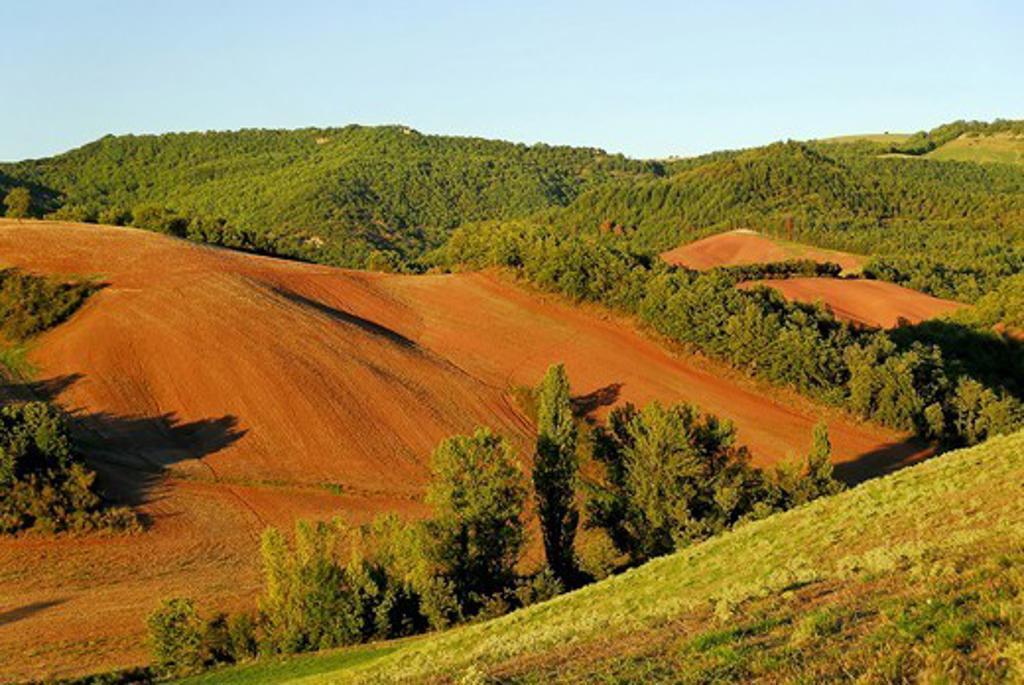 Landscape of Aveyron region, France : Stock Photo