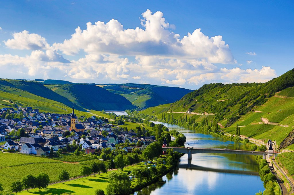 Stock Photo: 1606-185660 Germany ,Moseltal ,  Mosel Valley , Trittenheim City, Mose River, vinyards