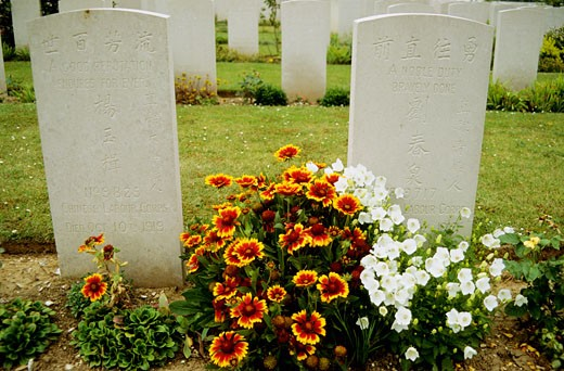 Stock Photo: 1606-18819 France, Picrdie, Somme, chineese cemetery, flowers