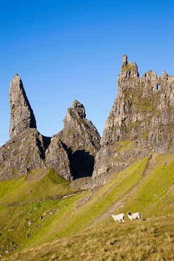 Stock Photo: 1606-189998 Scotland, Inner Hebrides, Isle of Skye, Old Man of Storr Mountains