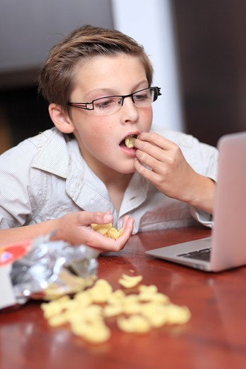 Stock Photo: 1606-197259 France, Young Boy With A Computer And Chips.