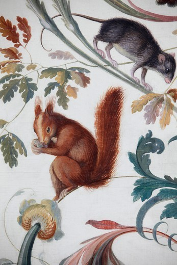 Stock Photo: 1606-198853 Hermitage Museum. The Loggia Of Raphael. Squirrel And Rat.