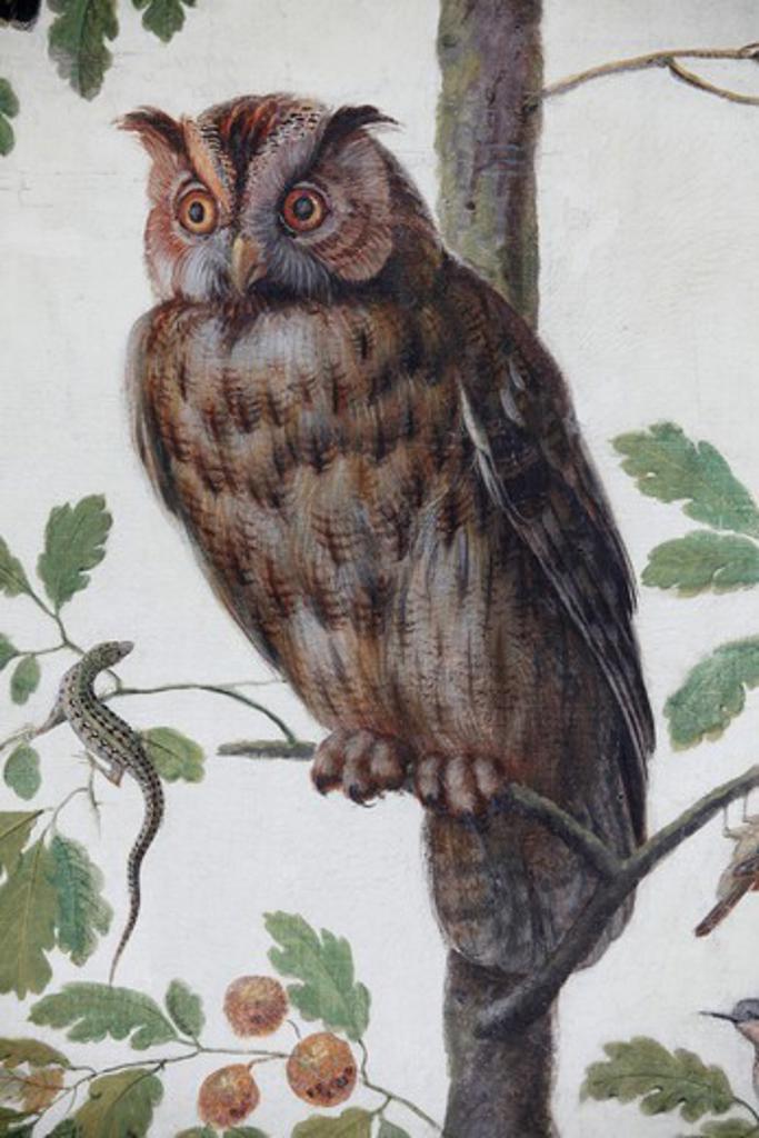 Hermitage Museum. The Loggia Of Raphael. Owl. Saint Petersburg. Russia. : Stock Photo
