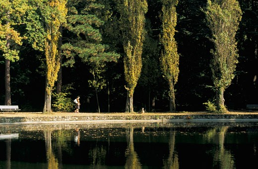 Stock Photo: 1606-20221 France, Paris, bois de Boulogne