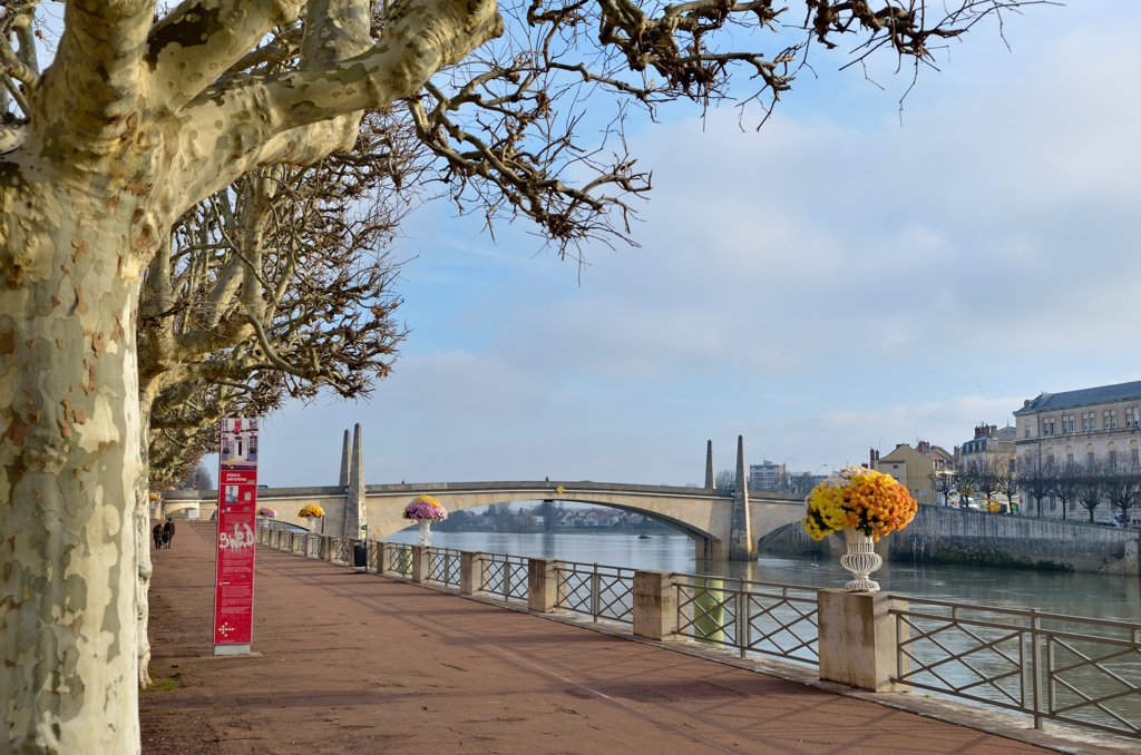 Stock Photo: 1606-202957 France, Bourgogne, Saone-Et-Loire, Chalon Sur Saone, Seen On The City