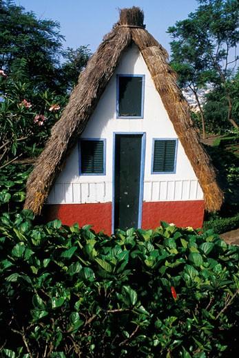 Stock Photo: 1606-20720 Madère, Funchal, jardin botanique, chaumière traditionnelle des paysans du nord