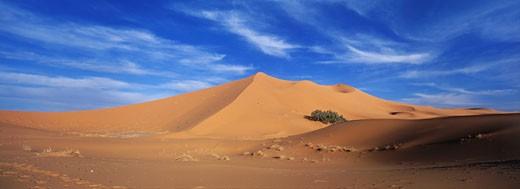 Morocco, Tafilalet region, Mergouza, Erg Chebbi dunes : Stock Photo