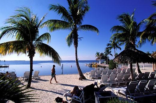 Stock Photo: 1606-23516 United States, Florida, Key Largo, Mariott private beach