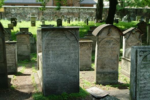 IN*Pologne, Cracovie, cimetière juif, gros plan sur pierres tombales avec inscriptions hébraïques, verdure : Stock Photo