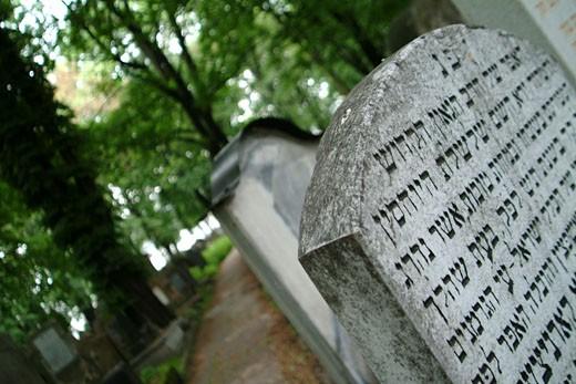 IN*Pologne, Cracovie, cimetière juif, gros plan sur pierre tombale avec inscriptions hébraïques, arbres verdoyants en arrière-plan : Stock Photo