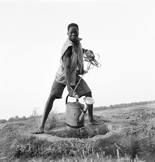 Black and white, Burkina Faso, Ouagadougou, gardener drawing some water from the watering can : Stock Photo