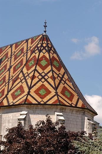Stock Photo: 1606-30814 France, Rhône-Alpes, Ain, Bourg-en-Bresse, church of the monastère de Brou, detail glazed tiles