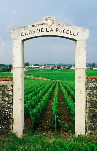 "Stock Photo: 1606-31776 France, Burgundy, Côte-d'Or, Puligny Montrachet, portico with ""CLOS DE LA PUCELLE"" inscription, entry to property, vineyards"