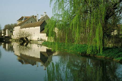 France, Burgundy, Yonne, Chablis, Serein river : Stock Photo
