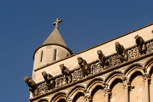 Stock Photo: 1606-35389 France, Burgundy, Côte-d'Or, Dijon, gargoyles of Notre Dame, turret and sculptures