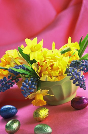 Bunch of yelllow and blue flowers (daffodils, tulips, grape hyacinth) in green bowl, small Eastern eggs, pink background : Stock Photo