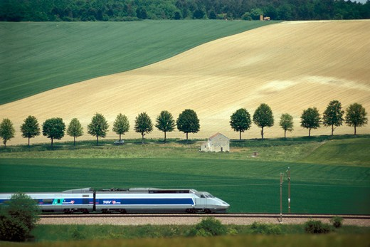 Stock Photo: 1606-37137 Tonnerre region, TGV( high-speed train) in the country